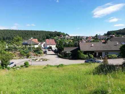 Grundstück mit Aussicht in idyllischer Lage von Iggelbach
