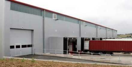 """""""BAUMÜLLER & CO."""" - 10.000 m² Hallenfläche - direkte Anbindung an A40 / A 59 / A3"""