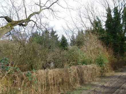 Ein von viel Grün umgebenes Grundstück in Rostock - Hinrichsdorf