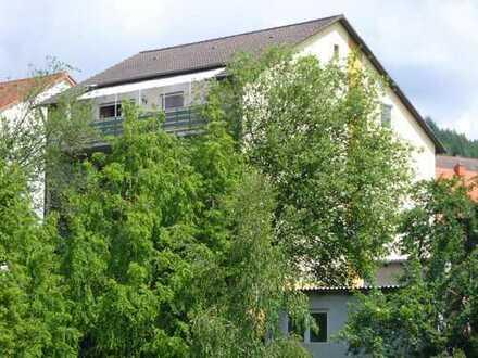 ca 107qm: schöne 3-Zimmer + 17qm Wohnküche +Bad. plus 14qm Terrasse überdacht+Garten ca 30qm