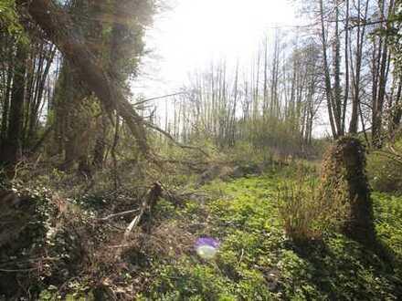 +++seltenes Grundstück mit Baumbestand + Biotop+++