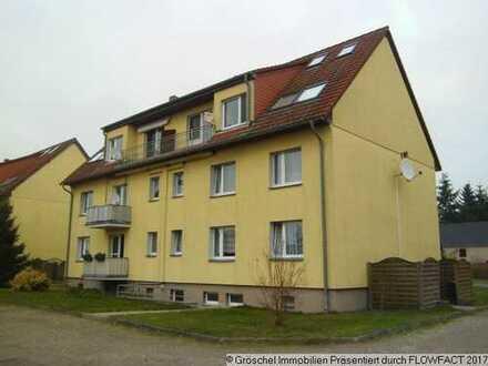 Vermietete Eigentumswohnungen als Anlage - weitere Größen möglich!