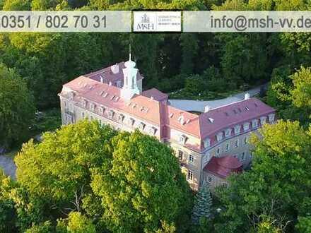 Herrschaftlich Wohnen im Schloß Wachwitz-helle 4,5-Zimmer-Maisonette-Whg.- Kamin-Blick über Dresden