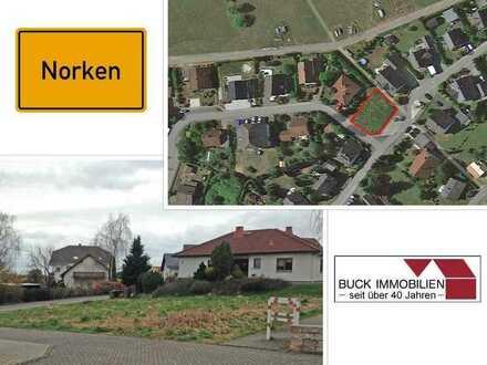 Ein traumhafter Platz für Ihr Traumhaus !! Sofort bebaubares Grundstück in ruhiger Ortsrandlage