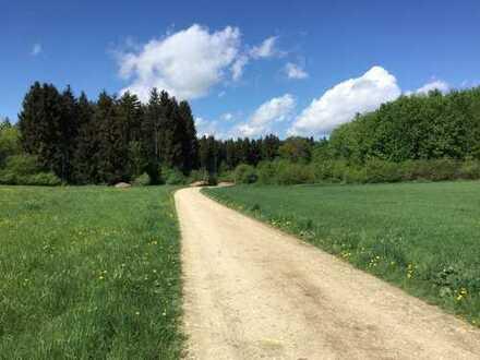Waldgrundstück in der Gemarkung Unterbechingen