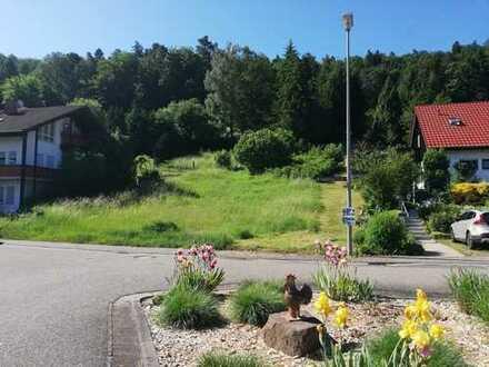 Großzügiges Grundstück in idyllischer Lage von Iggelbach mit Weitblick