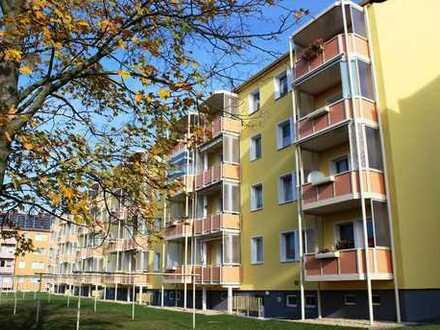 Ab November 2019 zu vermieten - Sanierte 1-Raum-Wohnung im Erdgeschoss mit Balkon
