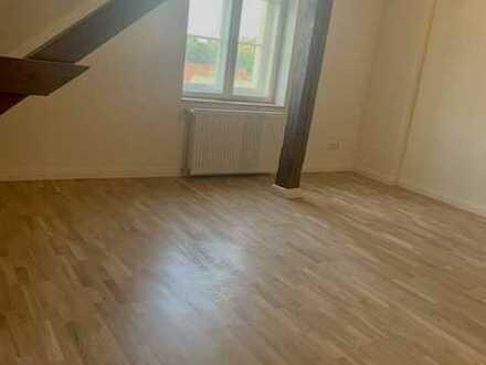 - ERSTBEZUG - sehr große 1-Raumwohnung in einer Stadtvilla mit Dusche zu vermieten!