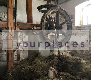 DREH AB! Für FILM Produktion! MÜHLE im schönen FLÄMING! Schafe & Hasen! Grünweitblick am Hang