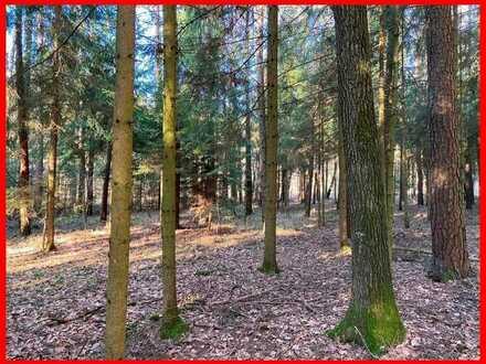 Waldgrundstück in Fichtenau...
