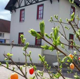 ZAUBERhaftes Anwesen mit ZWEI Einfamilienhäusern südlich von Erfurt – sofort beziehbar!
