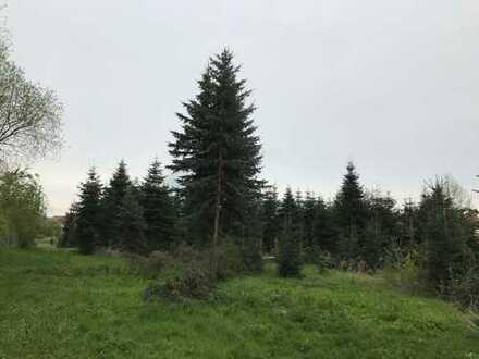 """Wohnpark """"An der Alten Mühle"""" in Regis-Breitingen"""