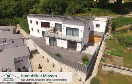 Exklusive Panoramavilla mit 3 Garagen und Wellnessbad in Traumlage von Beilngries im Altmühltal