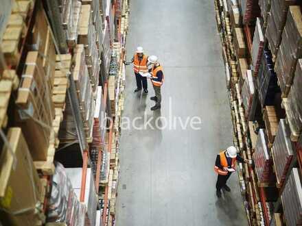 Erlanngen    Logistikanlage mit Rampenandienung