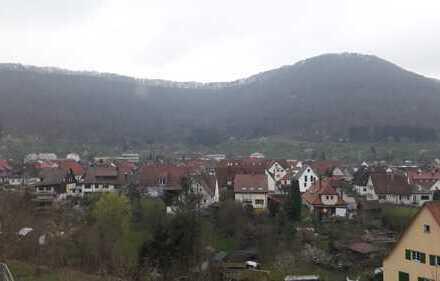 Umland Esslingen und Ulm - Famlienglück im gepflegten renovierten EFH am Südhang