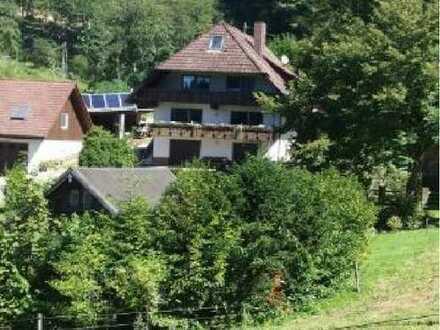 Ruhige naturnahe 3-Zi-Wohnung auf ehemaligem Schwarzwald-Bauernhof bei Gengenbach