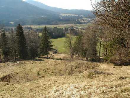 Was für ein Angebot!Extra großes landwirtschaftliches Grundstück mit Waldbestand in ruhiger Hanglage