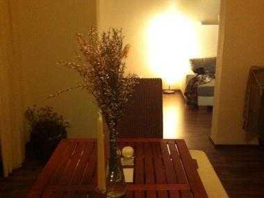 Chice City-Wohnung/Berfufstätigen-WG OHNE PROVISION!!!