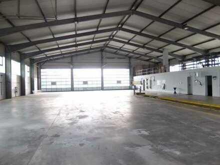 17_IB1378VH Multifunktionales Gewerbeanwesen mit Lagerhalle und Bürotrakt / Schierling