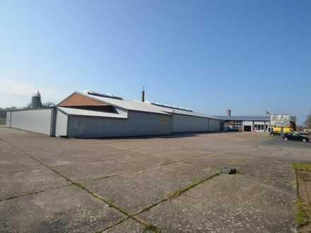 Lagerhallen und Werkstattgebäude in Edewecht-Jeddeloh I
