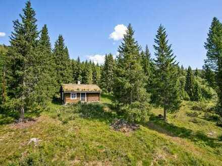 Natur Pur Blockhütte im Einzugsbereich 'Nationalpark Rondane'.