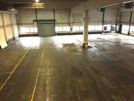 Flexible Hallenfläche 1.600 m²