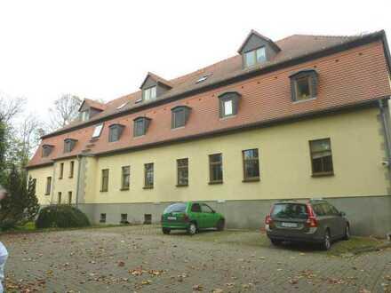 +++ 5 Raumwohnung im Alten Rittergut von Elstertrebnitz +++