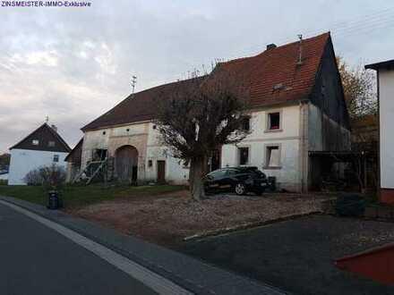 Sanierungsbedürftiges Bauernhaus