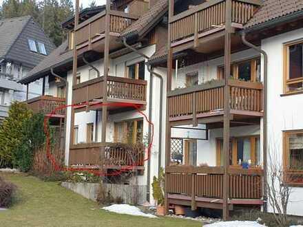 Attraktive 2-Raum-EG-Wohnung mit EBK und Balkon in Hinterzarten