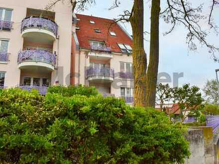 Bezugsfrei! 2-Zi.-ETW mit großem Balkon nahe dem Berghäuser Altrheinufer in Speyer