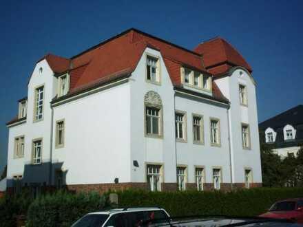 großzügige 1-Raum-Wohnung nah der Elbe
