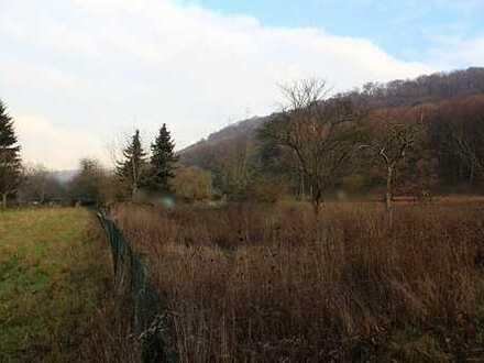 Ortsnahes Grundstück - Bauerwartungsland - in Nußloch