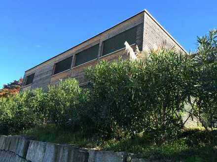 Grosses Wohnhaus mit Atelier/Büro und traumhafter Seesicht in Vira Gambarogno-Tessin