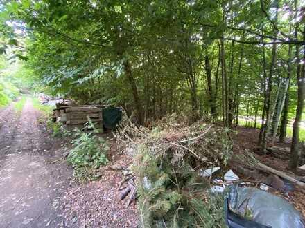 Drei land- und forstwirtschaftliche Grundstück mit teilweise Baumbestand zu verkaufen