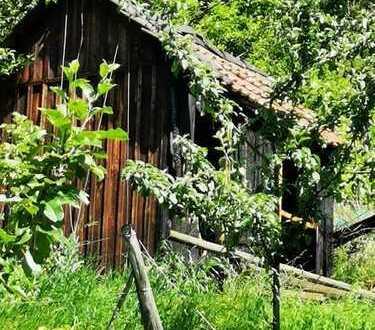Garten mit Weinberg und Hütte