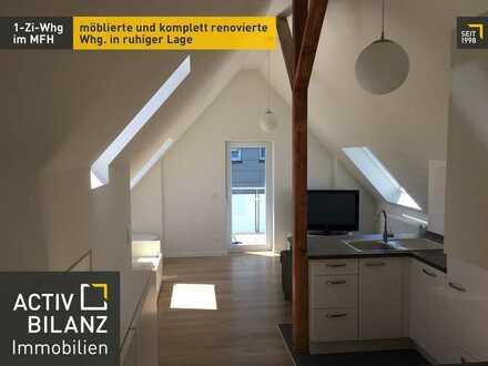 1 Zi. Whg. - komplett renoviert und möbliert in Ludwigsburg Pflugfelden