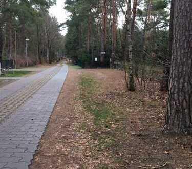 Baugrundstück in ruhiger Waldlage