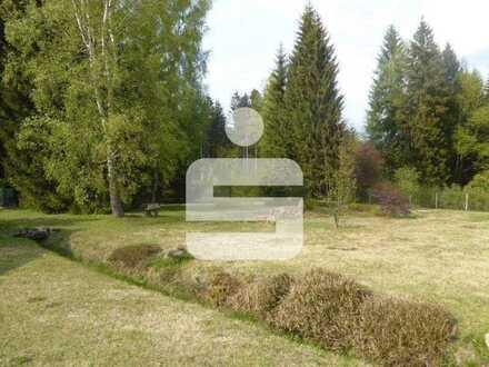 Grundstück in Schönwald