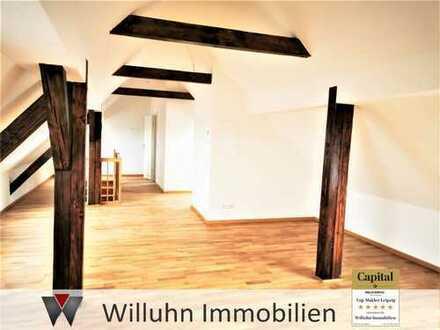 Über den Dächern von Gohlis: Erstbezug! - Balkon - Fußbodenheizung - Gäste-WC - zwei Eingänge