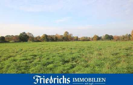 Ca. 1,9 ha Grünlandfläche in Ekernermoor Gemarkung Bad Zwischenahn / Hinter dem Eschhorn (Portsloge)