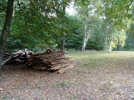Waldgrundstück am Zootzensee