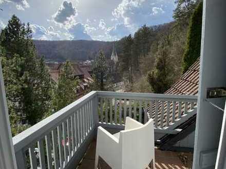 TOP Lage in Blaubeuren Blautopf Südhang mit Aussicht auf das Kloster