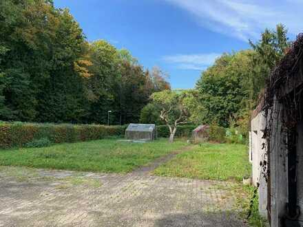Gegen Gebot: Großes Grundstück mit Altbestand in Unterhaunstadt