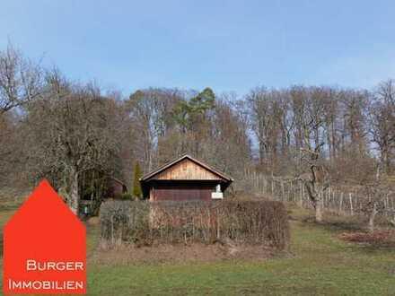 Ein Gartenhaus, Obstbäume und Sonne satt … Freizeitgrundstück in herrlicher Lage von Ötisheim