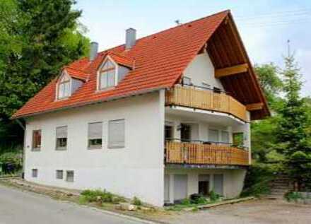 Charmante, lichthelle 2,5 Zimmer Wohnung in Hohentengen-Eichen