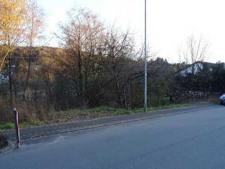 Großer, attraktiver Bauplatz in Münchweiler, direkt an der Rodalb gelegen