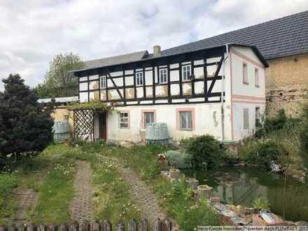 Baugrundstück für ein Einfamilienhaus in einer idyllischen Lage von Grimma