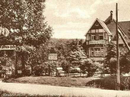 Ehemaliges Haus Hindenburg mit 1994m² Grundstück und vielfältigen Nutzungsmöglichkeiten zu verkaufen