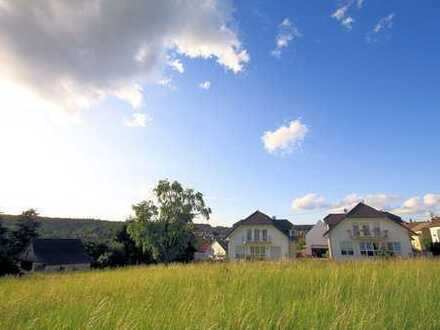 Taunus near Königstein: great house, 6 bedrooms, 3 baths