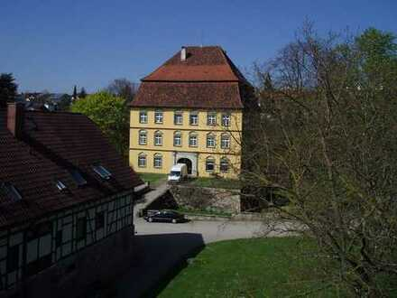 repräsentative Büroräume in Barockschloss für Unternehmen mit geringem Besucherverkehr